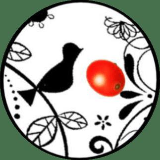 自家焙煎 有枝珈琲のロゴ